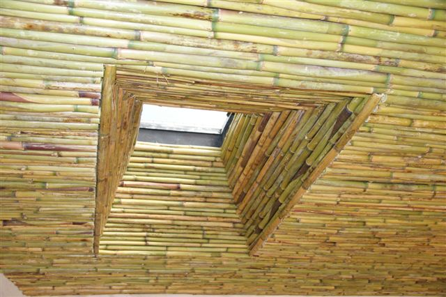 Bamboo Ceiling 2 Thatchscapes