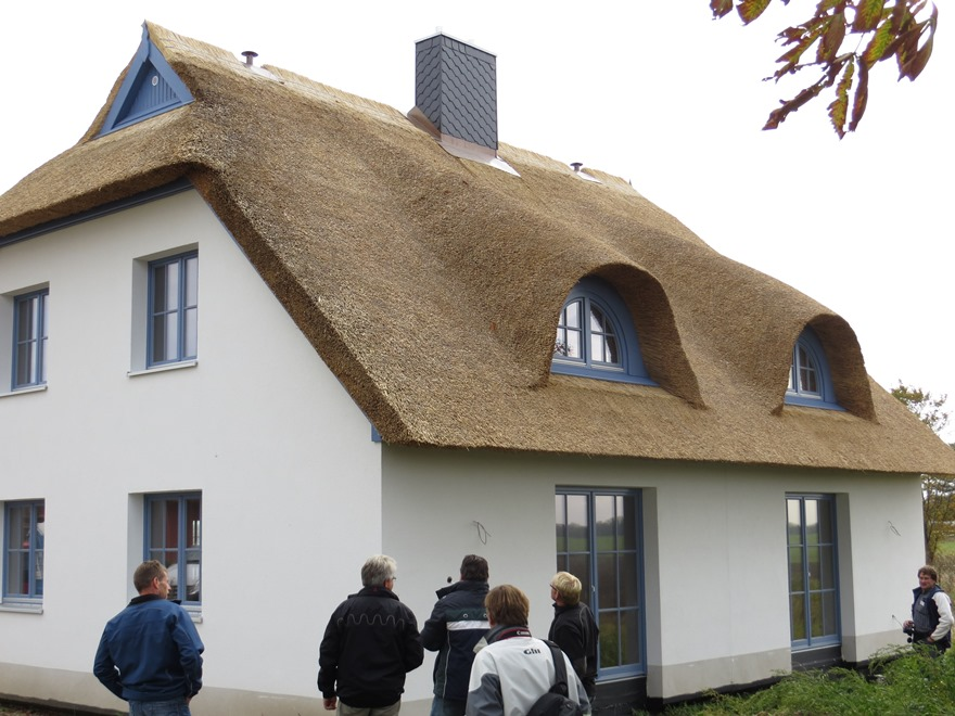 Thatch Roof Windows