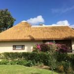 Thatch Roof in Constantia