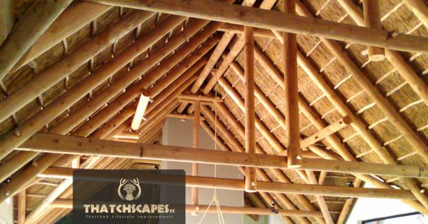 Interior roof archives thatchscapes for Roof designs interior