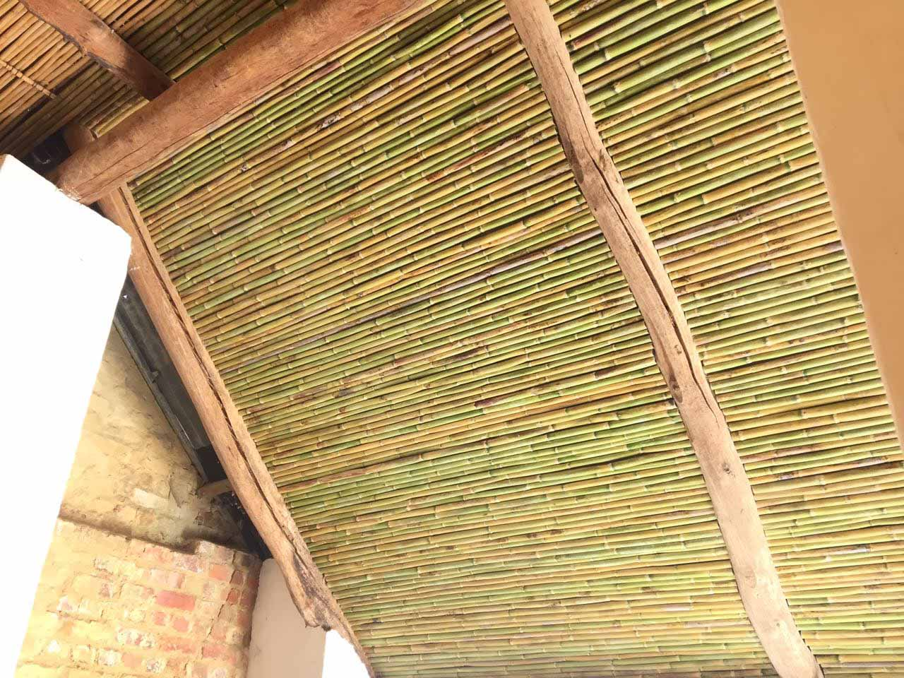 Bamboo Ceiling At Diamant Estate Paarl Thatchscapes