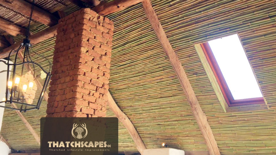 Projects Thatchscapes